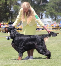 Norm Best in Show 1 high res